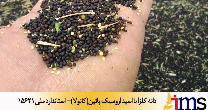 دانه کلزا با اسید اروسیک پائین(کانولا)- استاندارد ملی 15621